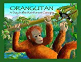 Orangutan by Rita Goldner