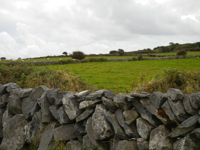 Ireland rock wall taken in 2012 by the author.