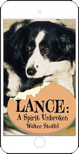 Lance: A Spirit Unbroken by Walter Stoffel