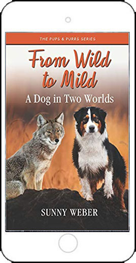 From Wild to MIld by Sunny Weber