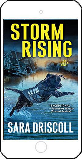 Storm Rising by Sara Driscoll