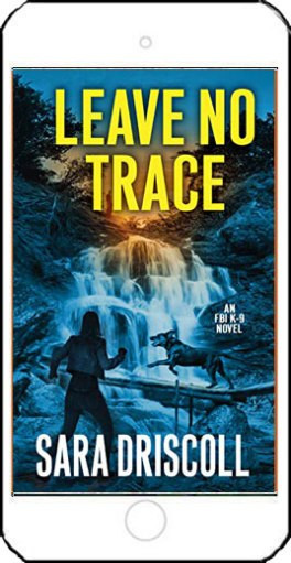 Leave No Trace by Sara Driscoll