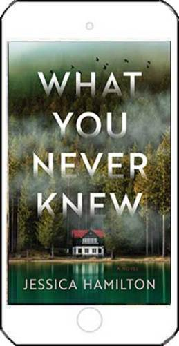 What You Never Knew - Jessica Hamilton